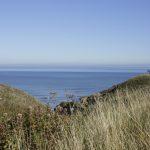 Blackhall Beach Banks Views