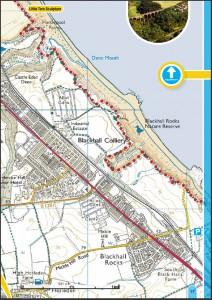 Castle Eden Dene and Blackhall Rocks Map