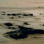 Crimdon coast