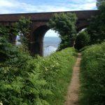 Coastal footpath near Hawthorn viaduct