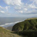 Ryhope Dene, looking south