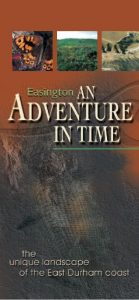 Adventure in Time Leaflet