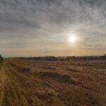 Hartlepool fields